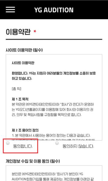 YG利用規約画面